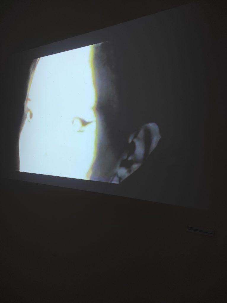 Exposition Frondaison à Lormont: Visages de visages