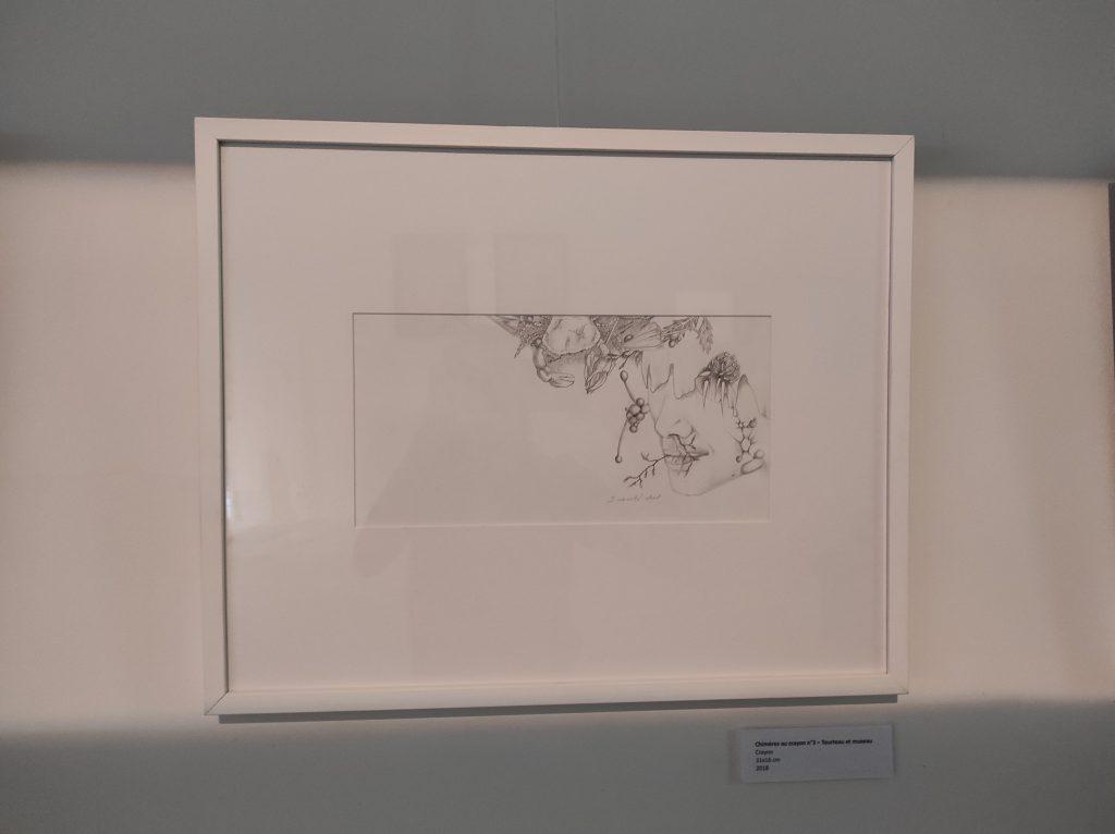 Exposition Frondaison à Lormont: Chimères aux crayons