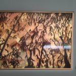 Exposition Frondaison à Lormont: Clair obscur